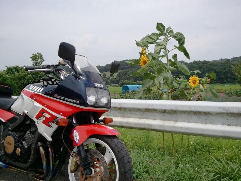 20110718_124037